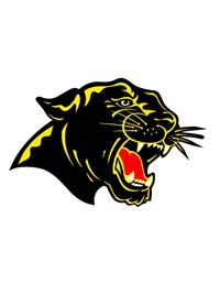 Carroll County Schools, panther logo